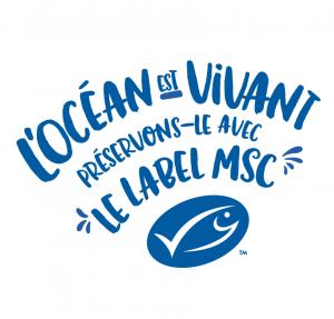 Logo des 20 ans du MSC (FRENCH)-scr